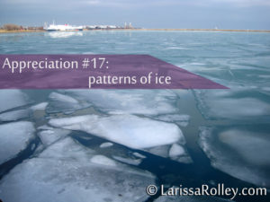 Appreciation #17: patterns of ice