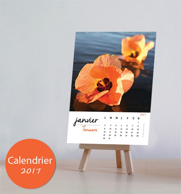 Calendar2017 Easel French 2 Larissa Rolley