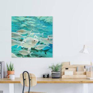 Fish in Lagoon – Tahiti – fine art print
